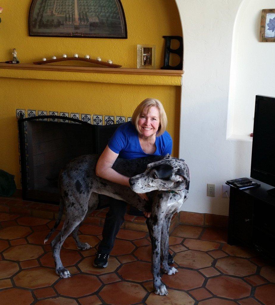 Woman hugging Great Dane dog