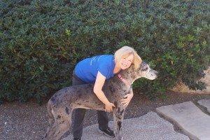 Teresa, The Owner of the Pet Nanny hugging Shannon her Great Dane dog