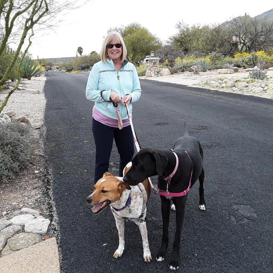 Teresa walking two dogs